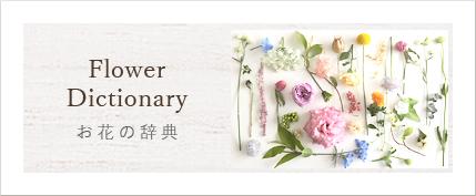 お花の辞典